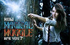 How Magical/Muggle Are You?