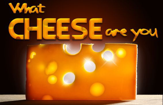 What Cheese Are You?