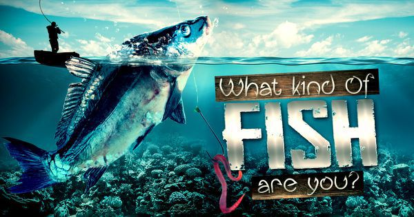 What Kind Of Fish Are You?