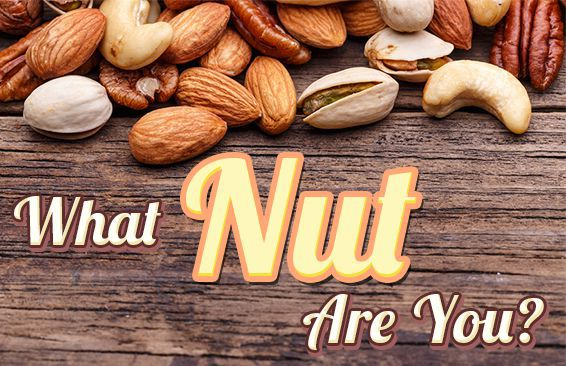 What Nut Are You?