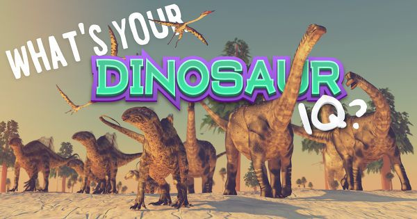What's Your Dinosaur IQ?