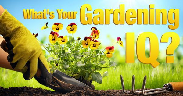What's Your Gardening IQ?