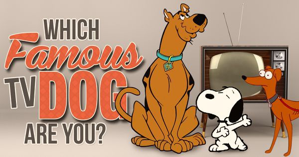 Which Famous TV Dog Are You?