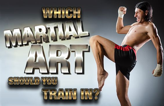 Which martial art should you train in