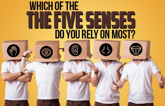 Which Of The Five Senses Do You Rely On Most?