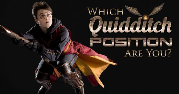 Which Quidditch Position Are You?