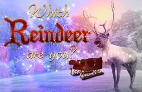 Which Reindeer Are You?