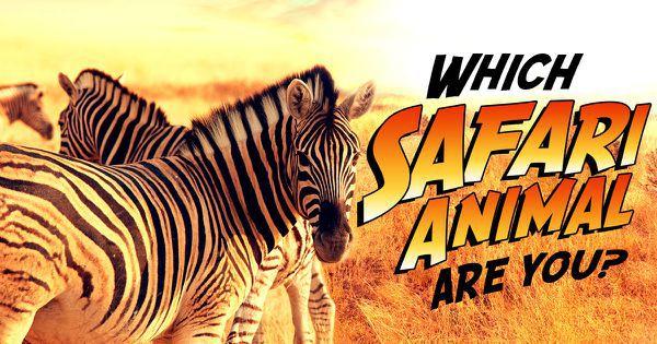 Which Safari Animal Are You?