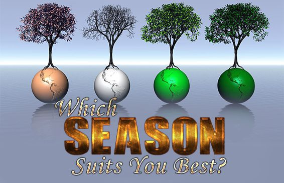 Which Season Suits You Best?