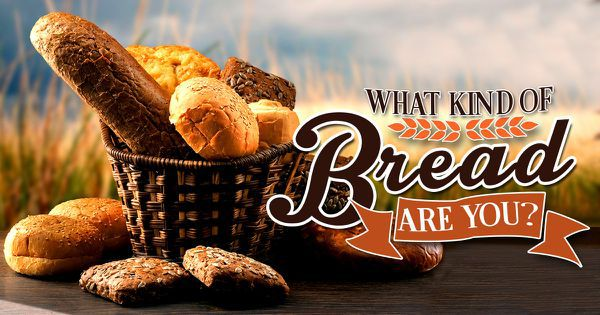 what kind of bread are you
