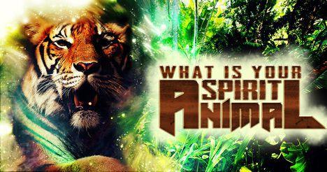 whats your spirit animal
