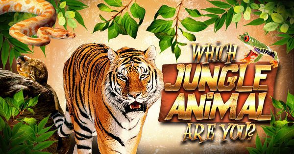 Which Jungle Animal Are You?