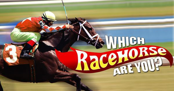 Which Racehorse Are You?