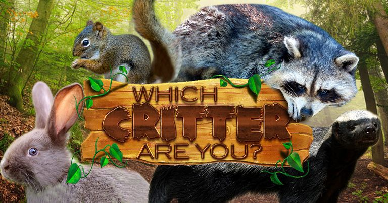 Which Critter Are You?
