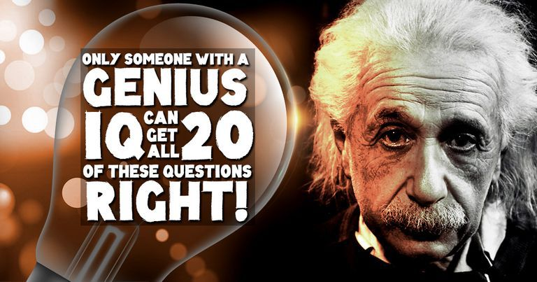 Only someone with a genius IQ can get all 20