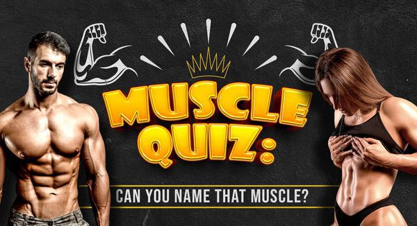 Muscle Quiz: Can You Name That Muscle?